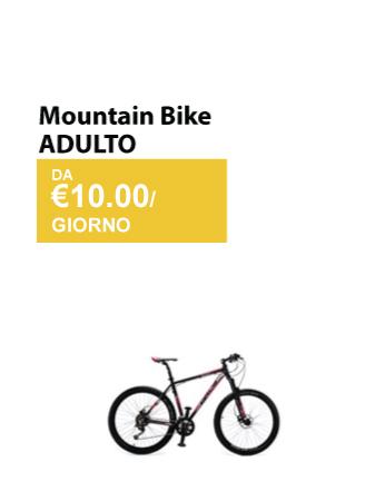 mountain bike adulto